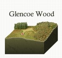 Stukje land in Schotland, 2x1 vierkante voet, type Joint